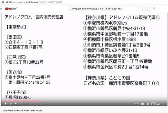 Adrenochrome_sales_routes_by_Fujifilm_in_Japan_24.jpg