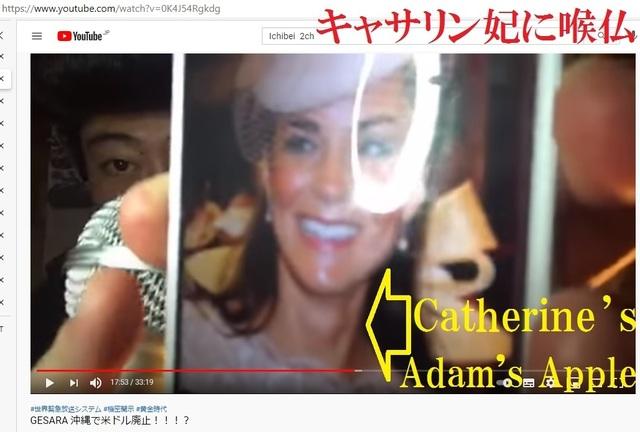 Catherine_s_Adame_s_apple_20.jpg