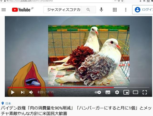 Deformed_pigeons_23.jpg