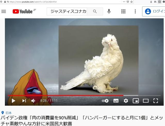 Deformed_pigeons_24.jpg
