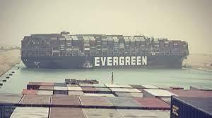 Evergreen_have_stollen_children_all_over_the_world_20.jpg