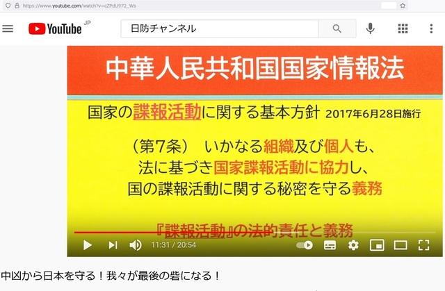 Hijacked_japan_by_Krean_and_Chinese_22.jpg