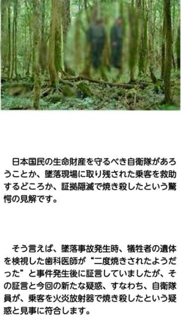 Nikko_123_passenjarplaine_was_attacked_83.jpg