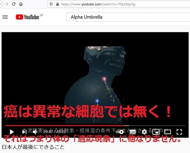 The_reason_why_Japanese_dispear_60_3.jpg